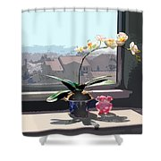 Phalaenopsis Orchid In Sunny Window Shower Curtain