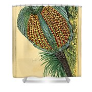 Pheasant 1837 Shower Curtain