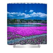 Phlox And Mt. Fuji Shower Curtain