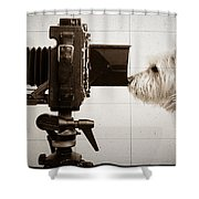 Pho Dog Grapher - Ground Glass View Shower Curtain