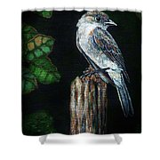 Phoebe Drama Shower Curtain