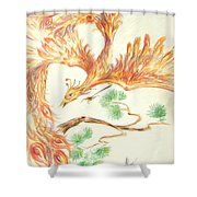 Phoenix In Flight Shower Curtain