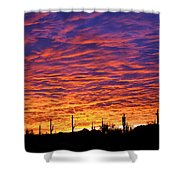 Phoenix Sunrise Shower Curtain