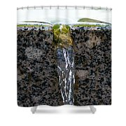 Phone Case - Cold And Clear Water Shower Curtain