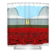 Photo Synthesis 8 Shower Curtain