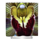 Orchid Center Shower Curtain