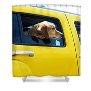 Yellow With Lab Shower Curtain