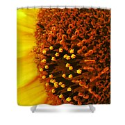 Photon Torpedoes Primed Shower Curtain