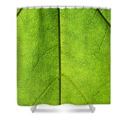 Photosynthesis - Featured 3 Shower Curtain