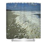 Phytoplankton Bloom On Beach Shower Curtain