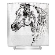 Piaff Polish Arabian Horse Drawing 1 Shower Curtain