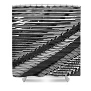 Piano Strings  Waterloo, Quebec, Canada Shower Curtain
