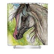 Piber Polish Arabian Horse Watercolor Painting 3 Shower Curtain