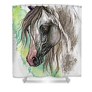 Piber Polish Arabian Horse Watercolor Painting Shower Curtain