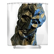 Picasso's Head Of A Woman -- Fernande Shower Curtain