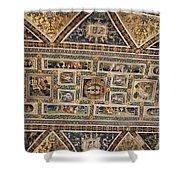 Piccolomini Bibliotheca - Siena Shower Curtain