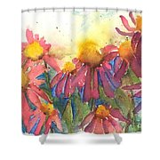 Pick Me Pick Me Shower Curtain by Sherry Harradence