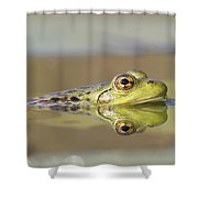 Pickerel Frog Nova Scotia Canada Shower Curtain