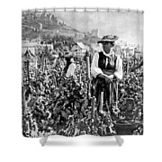 Picking Grapes In Switzerland Shower Curtain
