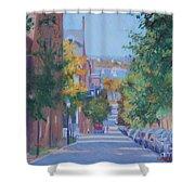 Pickney Street Fall Shower Curtain