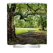 Picnic At The Park Shower Curtain