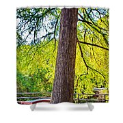 Picnic By The Cypress Shower Curtain