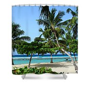 Picnic Here Shower Curtain
