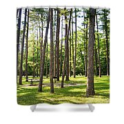 Picnic In The Pines Shower Curtain