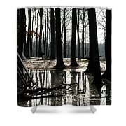 Picnic Silver Shower Curtain