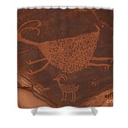 Pictograph 2 Shower Curtain