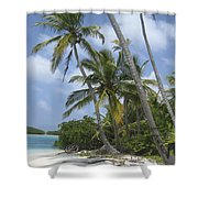 Picture Perfect Paradise Shower Curtain