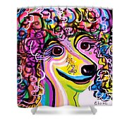 Picture Perfect Poodle  Shower Curtain by Eloise Schneider