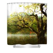 Picturesque Foggy Lake Shower Curtain