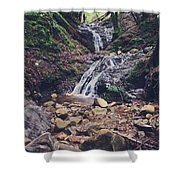 Picturesque Shower Curtain by Laurie Search