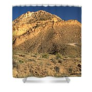 Piece Of The Coxcomb Shower Curtain