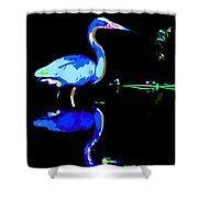 Pied Heron Shower Curtain