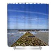 Pier One Shower Curtain