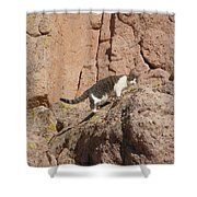 Pierre The Mountain Climber Shower Curtain