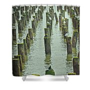 Piers And Birds Shower Curtain