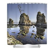 Pig And Sows Inlet In Garibaldi Oregon At Low Tide Shower Curtain