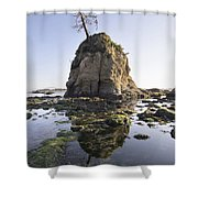 Pig And Sows Rock In Garibaldi Oregon At Low Tide Shower Curtain