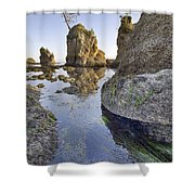 Pig And Sows Rock In Garibaldi Oregon At Low Tide Vertical Shower Curtain