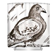 Pigeon I Sumi-e Style Shower Curtain