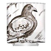 Pigeon II Sumi-e Style Shower Curtain