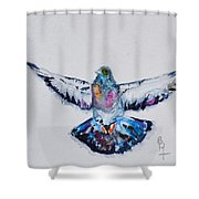 Pigeon In Flight Shower Curtain