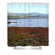 Pigeon Point Bay Shower Curtain