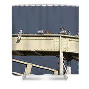 Pigeons On The Bridge Shower Curtain