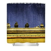 Pigeons On Yellow Roof Shower Curtain