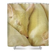Pigs Sleeping Shower Curtain