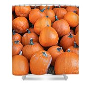 Piles Of Pumpkins Shower Curtain